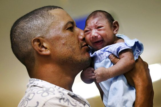 Doctors Name Monsanto's Larvicide As Cause of Brazilian Microcephaly Outbreak