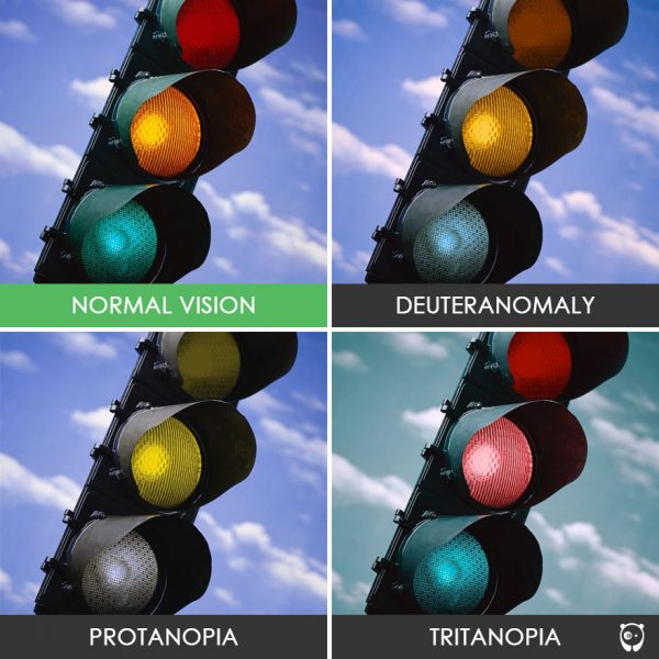 different-types-color-blindness-photos-70