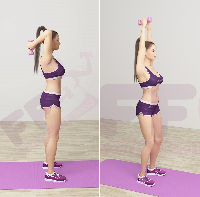 2.Triceps-Ext