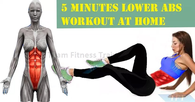 5 MINUTES LOWER ABS WORKOUT AT HOME(VIDEO)